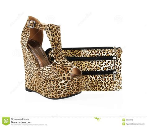 Animal Free Felix Jungle Leopard Print Clutch 2 by Leopard Print Shoes And Purse Stock Photo Image 23922610
