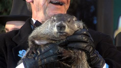 groundhog day no shadow meaning no shadow pennsylvania groundhog predicts early