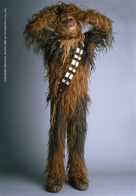 chewbacca costume chewbacca images images