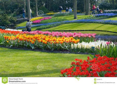 Pflegeleichte Blumen Garten by Bunter Blumengarten Stockbild Bild Frisch Knospe