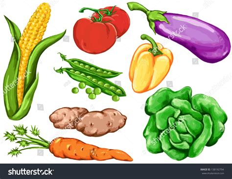 Drawing Vegetables by Vegetable Drawing Images Www Pixshark Images
