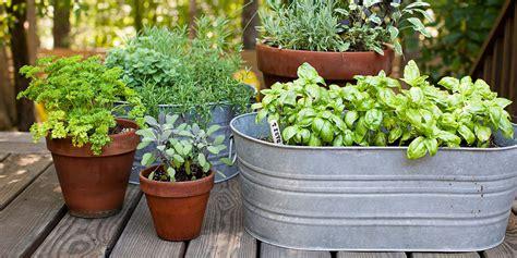 backyard decorating ideas easy gardening tips