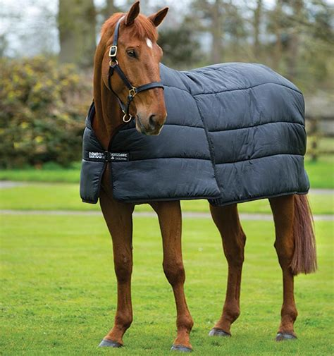 horseware rug liners horseware rug liners rugs ideas