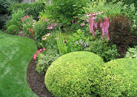 common backyard plants common landscaping bushes inspiring landscaping bushes