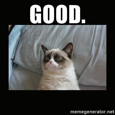 Good Meme Cat - good grumpy cat says good meme generator