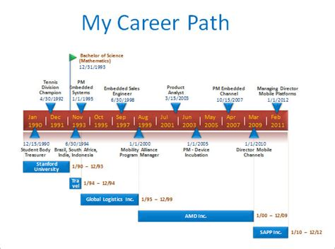 career path template sle career timeline template 15 free documents in