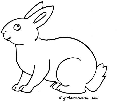 gambar mewarnai kelinci gambar mewarnai