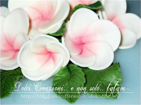 come fare fiori con la pasta di zucchero fiori frangipani o plumeria in pasta di zucchero