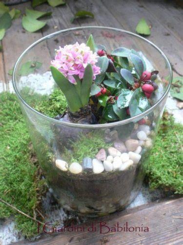 giardini in vaso un mini giardino nel vaso di vetro e tanti auguri i