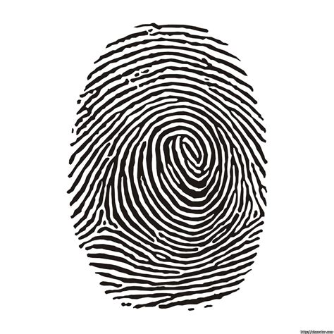 biometric art vector for free use fingerprint