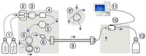high performance liquid chromatography diagram lab 2 high performance liquid chromatography chemistry