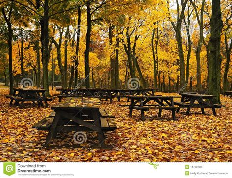 autumn picnic tables stock photo image  outdoors fall