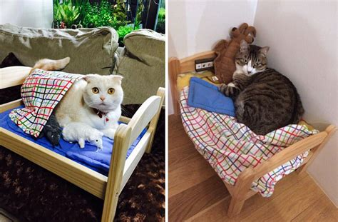 ikea cat bed japanese cat owners turn ikea doll beds into adorable cat beds