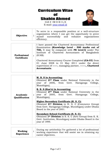 A Professional Curriculum Vitae by Professional Curriculum Vitae Format Template