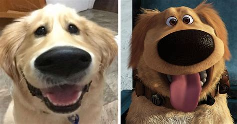 puppy up this snapchat filter makes your look like dug from up bored panda