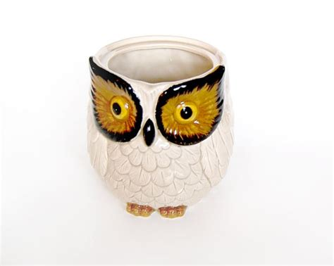 Owl Decorations For Kitchen by 40 Best Images About Vintage Owls On Cookie