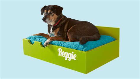 diy raised dog bed raised dog bed