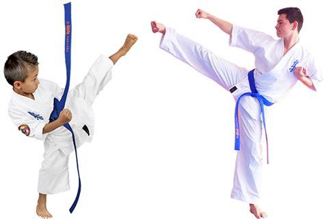 imagenes de niños karate karate kyokushin colombia