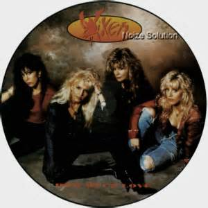 how much is it to vinyl side a house vixen picture disc collectors store and other collectable vinyl records