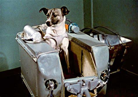 heroes  space laika  space dog