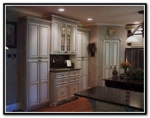 Diy Kitchen Cabinet Ideas kitchen cabinet door ideas diy home design ideas
