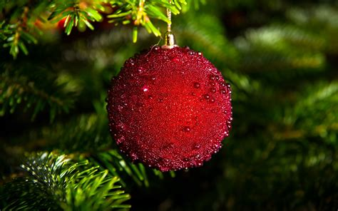 christmas ball red tree branches new year wallpaper