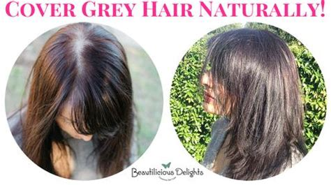 how to cover gray hair naturally for african americans blog tagged quot cover grey hair naturally quot beautilicious