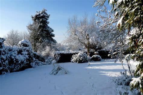 garten winter mein winter garten foto bild jahreszeiten winter