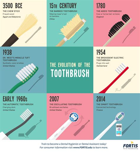 Of The by The Evolution Of The Toothbrush Infographic