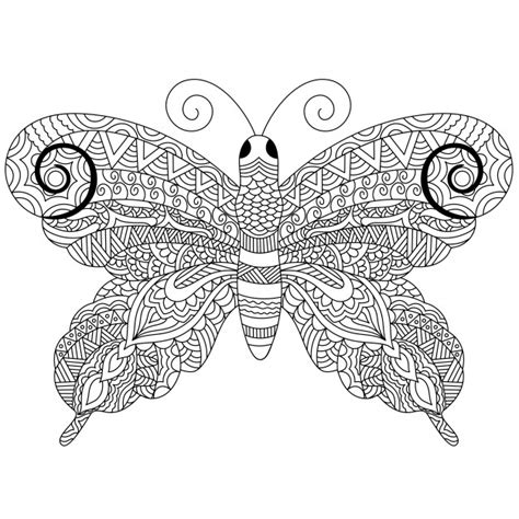 free editing doodle creative zentangle style butterfly with ethnic floral