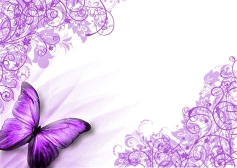 Home Design 5d Free Download by Butterflies Images Purple Butterfly Wallpaper Hd Wallpaper
