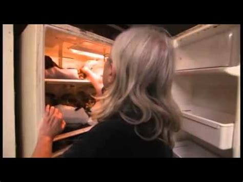 Lemari Es Hari Ini wanita ini simpan 100 bangkai kucingnya dalam lemari es
