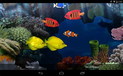 live wallpaper best fish live wallpapers android live wallpaper livewallpapers org