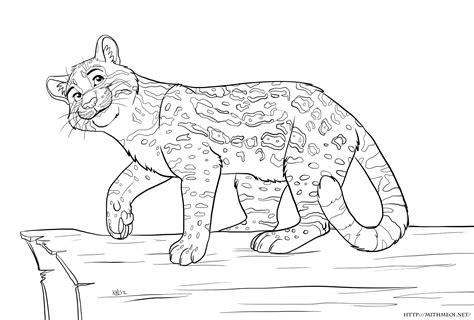 ocelot cat minecraft coloring pages ocelot best free