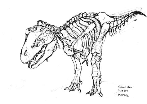 t rex outline coloring pages