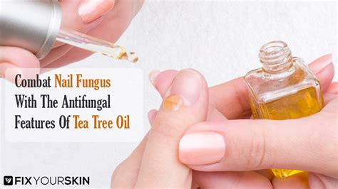 tea tree oil ingrown toenail ingrown toenail best tea tree oil for nail fungus effective solution fix