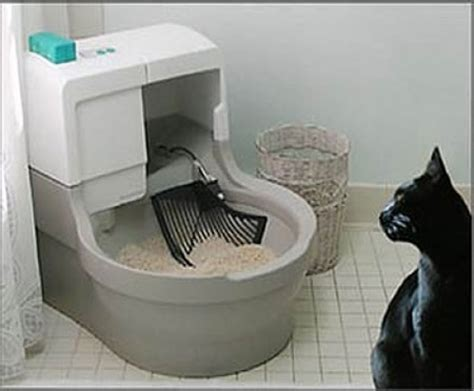 auto litter box cats corner store automatic litter box