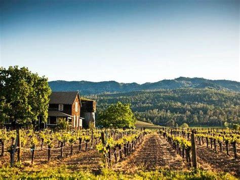 Detox Center In Napa Valley Ca by Vineyards Picture Of Napa Napa Valley Tripadvisor