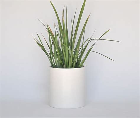 planters awesome white modern planter tall contemporary