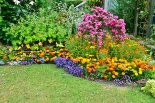 Garden Flowers A Z A List Of Perennial Flowers From A To Z With Pictures