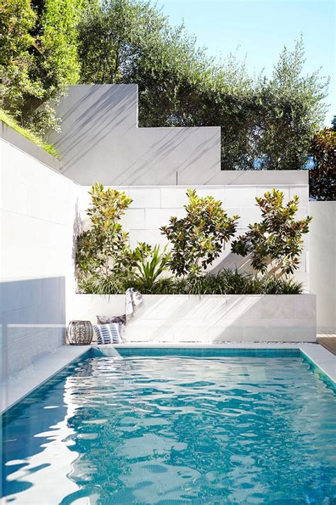 small backyard with pool landscaping ideas small plunge pools design ideas awesome small backyard pools