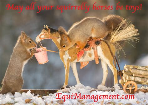 merry christmas  equimanagement business solutions  equine practitioners equimanagement