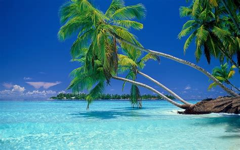 imagenes relajantes del mar naturaleza paisaje playa mar vacaciones verano