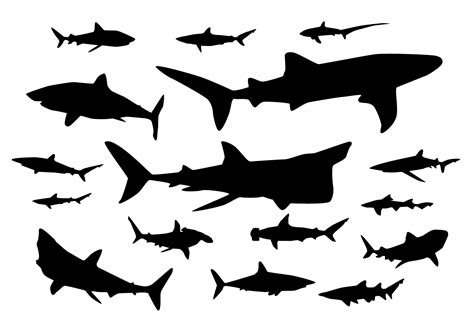 shark silhouette vectors download free vector art stock