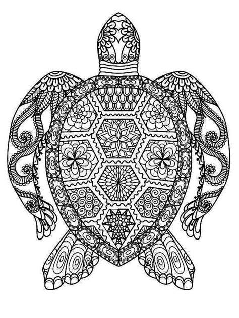 turtle mandala coloring pages printable turtle mandala crafts pinterest mandala coloring