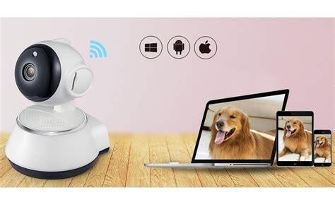 wifi pet cam monitor  pets   phone  work computer
