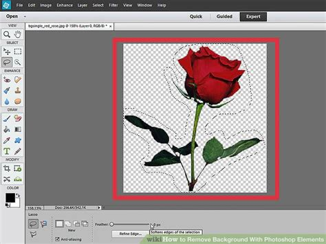 delete background in photoshop how to remove background with photoshop elements with
