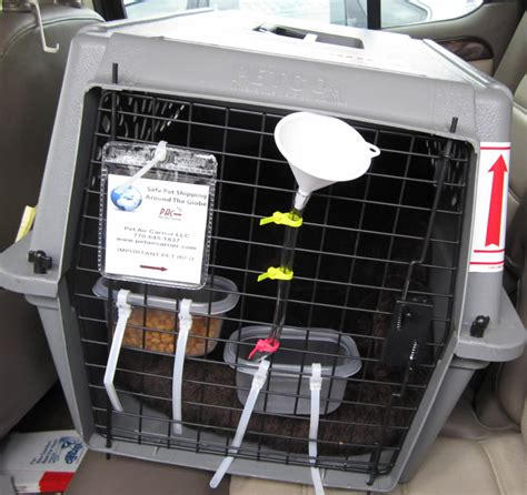 airline crate custom modified pet shipping crates pet air carrier llc