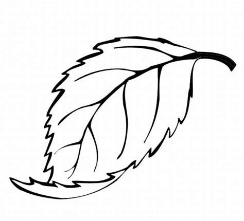 oak leaf coloring page coloring pages