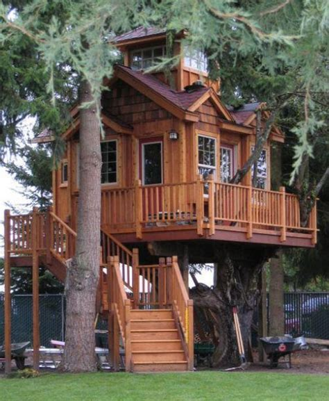 Livable Tree House Plans Tree Houses For Adults 40 Pics